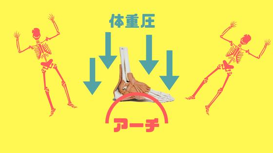 アーチサポートとは、足のクッションを支える構造